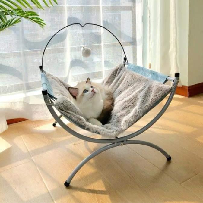 Presale Bohemia luxury hammock blue