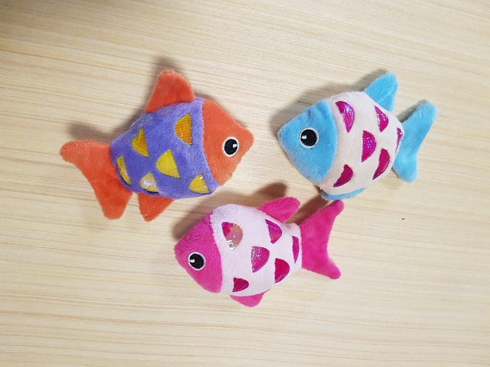 bohemia colorfish