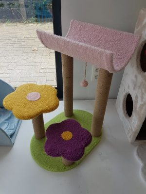 kittenpaal flower sleepout