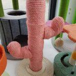 kittenpaal pink cactus