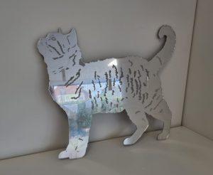 cat mirror 1
