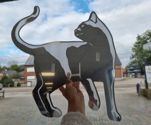 cat mirror gravure 2 xl